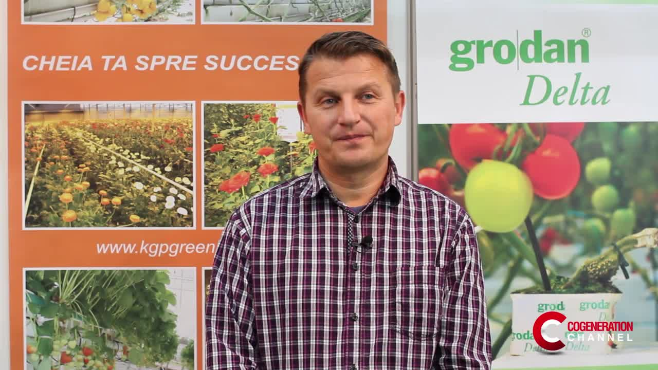 Maximising the greenhouse production yield thanks to cogeneration