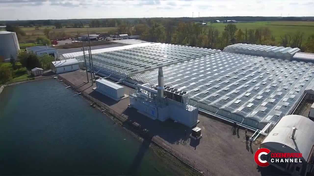 The CHPSOP 2 Programme supports the CHP production in the Ravensbergen greenhouse