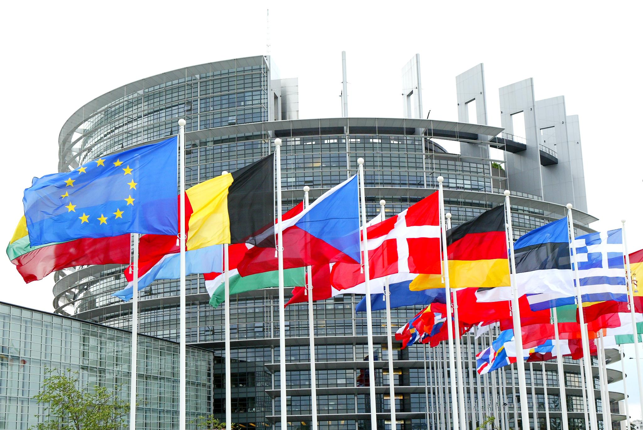 The MEPs point of view on the energy efficiency topic
