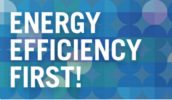 """Energy Efficiency First"": the European Union's objective of improving energy efficiency"